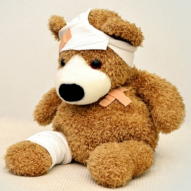 teddy-562960_6402