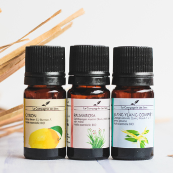 aromathérapie le coffret huiles essentielles bio
